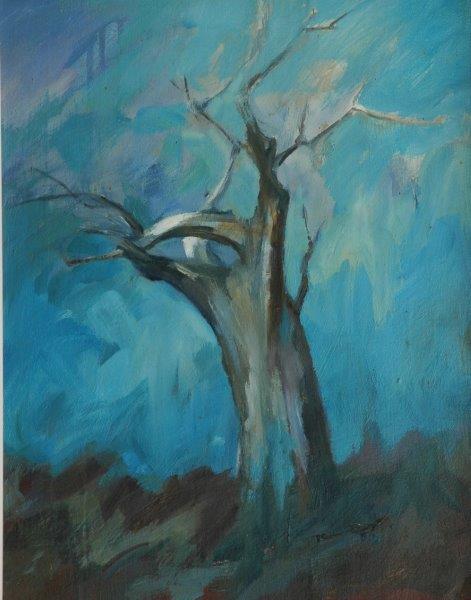 Baobab study